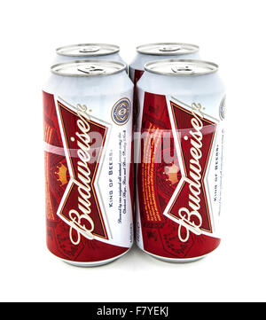 Four Pack of Budweiser Beers on a White Background - Stock Photo
