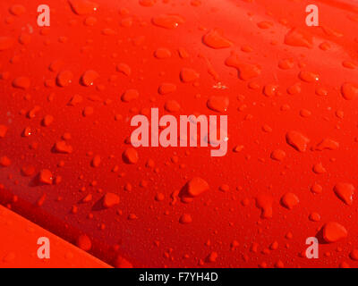 sunlit raindrops on bright red bonnet of classic car with gleaming paintwork - Stock Photo