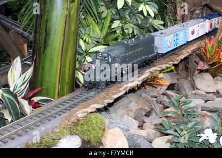 The holiday train at the Bronx Botanical Gardens, the New York Stock ...