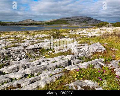 Gealain Lough, Mullagh More, The Burren, County Clare, Ireland, The wild Atlantic Way - Stock Photo