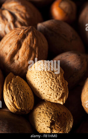 Assorted Mixed Organic Nuts with Walnuts Almonds and Pecans - Stock Photo