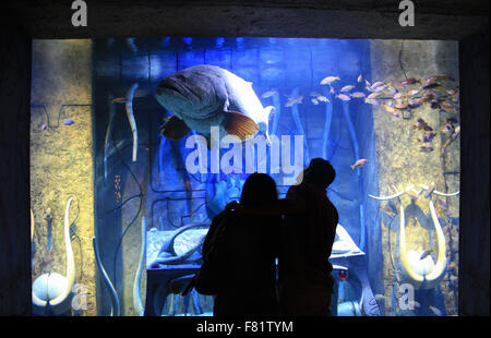 silhouette of tourist couple looking at a giant Fish in an aquarium at Atlantis hotel of Dubai, UAE. - Stock Photo