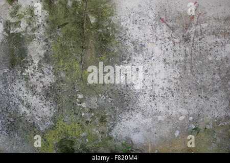 old bark wood - Stock Photo