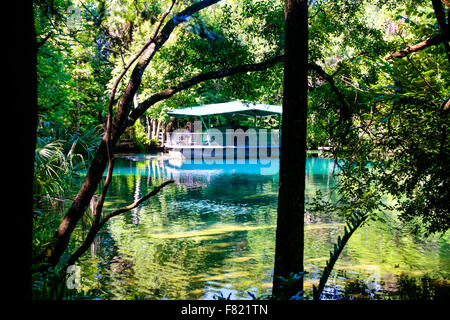 The Manatee underwater observatory in Pepper Creek, part of the Homosassa Springs State Park in Florida - Stock Photo