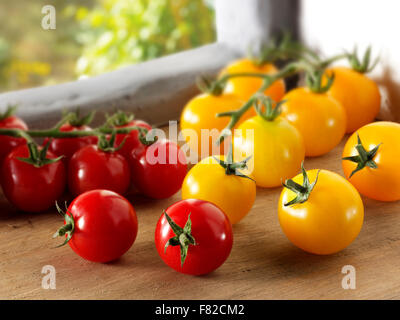 Mixed fresh picked yellow and red plum tomatoes - Stock Photo