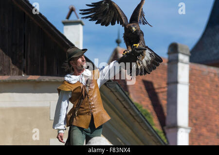 A golden eagle about to fly from its handler at Rosenberg Renaissance Castle - Stock Photo
