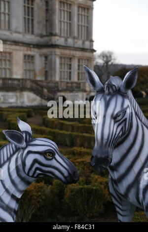 A pair of Longleat Festival of Light wire framed silk zebra animals in the gardens of the main house - Stock Photo