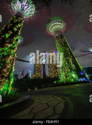 Two of the famous towers at Gardens by the Bay in Singapore, standing illuminated in bold green lights against a - Stock Photo
