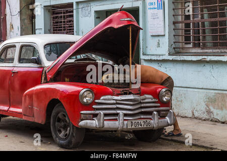 A man getting under the bonnet of his old timer in Centro Havana. - Stock Photo