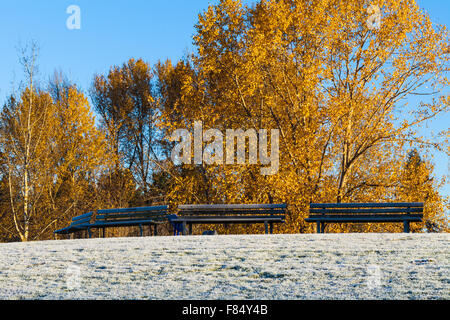 Vacant benches on a frosty knoll in a Vancouver community park - Stock Photo