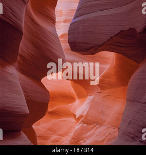 sandstone walls of lower antelope canyon on the navajo reservation near page, arizona - Stock Photo