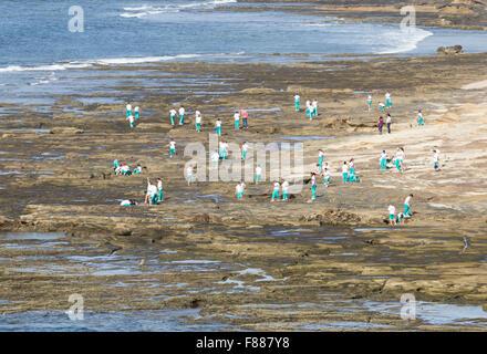 Spanish schoolchildren on field trip on volcanic rocks on north coast of Gran Canaria, Canary Islands, Spain - Stock Photo