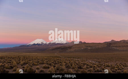 Sunset in Andes. Parinacota and Pomerade volcanos. High Andean landscape in the Andes. High Andean tundra landscape - Stock Photo