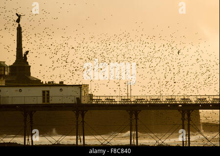 Aberystwyth Wales UK, Tuesday 08 December 2015  A flock of starlings performing displays in the air above Aberystwyth - Stock Photo
