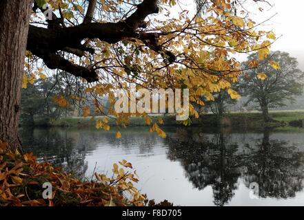 The River dee in Autumn at chainbridge Llangollen in North Wales UK - Stock Photo