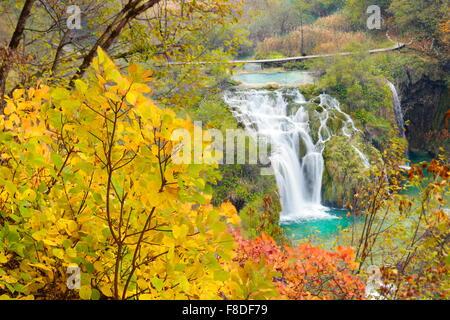 Plitvice Lakes National Park in autumn colors, Plitvice, Croatia, UNESCO - Stock Photo