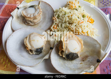 seafood plate of eastern canada seafood Stock Photo ...