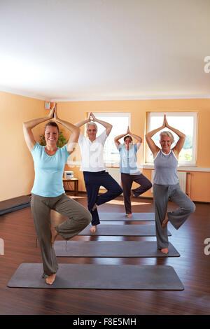Yoga group in a gym doing Vrikshasana exercise (The Tree) - Stock Photo