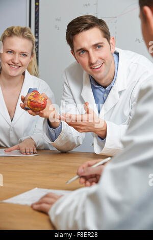 Teacher With Model Of Heart In Biology Class - Stock Photo