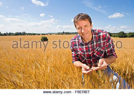 Portrait smiling farmer examining sunny rural barley crop field in summer - Stock Photo