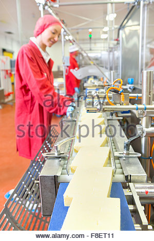 Quality control workers checking cheese on production line in processing plant - Stock Photo
