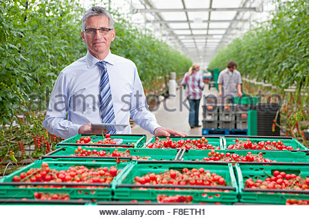 Portrait smiling businessman with digital tablet at crates of ripe red vine tomatoes in greenhouse - Stock Photo