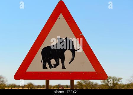 Road traffic sign warning of desert elephants in Erongo Region of Namibia - Stock Photo
