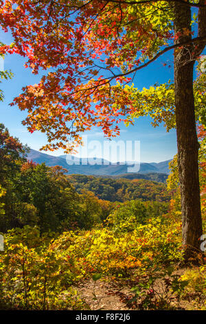great smoky mountains coloring pages-#36