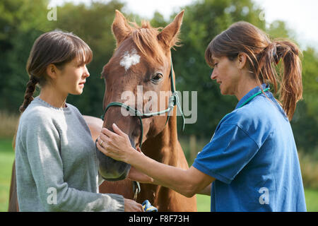 Female Vet Examining Horse In Field With Owner - Stock Photo