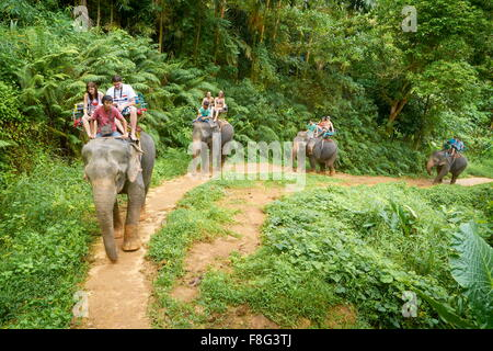 Thailand - Khao Lak National Park, elephant riding in tropical forest - Stock Photo