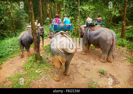 Thailand - elephant riding in tropical forest - Stock Photo