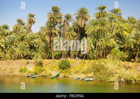 Egypt - bank of the Nile, riverside landscape of the valley of Nile, road to Aswan town, Egypt - Stock Photo