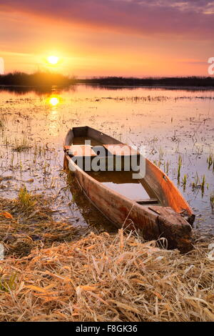 Sunrise landscape at Biebrza National Park, Poland - Stock Photo