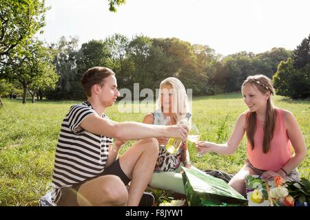 Family sitting on grass in park enjoying a glass of wine - Stock Photo