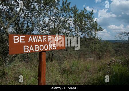 Baboon warning sign, Rift Valley, Kenya - Stock Photo