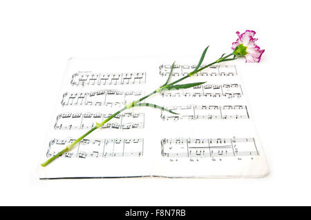Red carnations flower on musical notes page stock photo 91589011 romatic concept red carnations flower on musical notes page stock photo ccuart Gallery