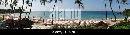 panoramic view of beach and umbrellas on Big Island Hawaii on Kona Coast Hawaiian Islands USA