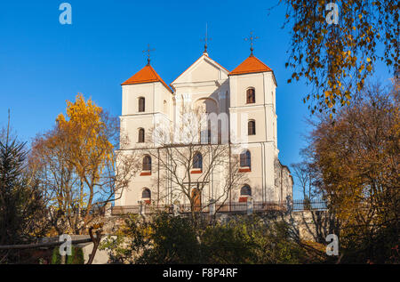 Church of the Visitation of the Blessed Virgin Mary, Trakai, historic city and lake resort in Lithuania on a sunny - Stock Photo