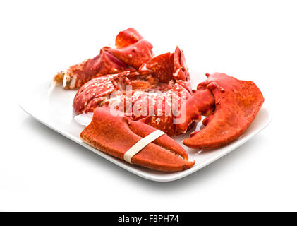 Claws and Tail of a Cooked European Common Lobster isolated on a white studio background. - Stock Photo