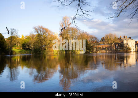 Reflections in the River Ouse near Lendal Bridge (1) , City of York, North Yorkshire, England, UK - Stock Photo