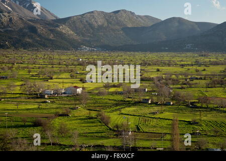 Field and settlement pattern, with flooded areas, on The Lassithi plateau in spring, Crete. A large inwardly-draining - Stock Photo