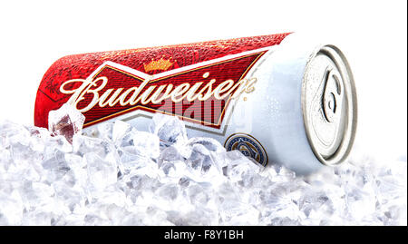 Can of Budweiser beer on a bed of ice over a white background - Stock Photo