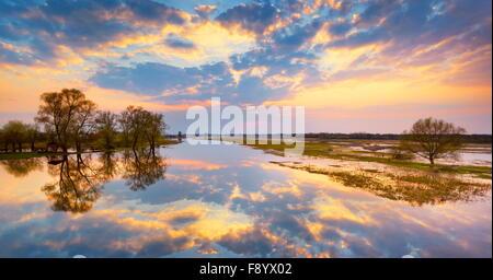 Sunset at Biebrzanski National Park, Podlasie region, Poland - Stock Photo