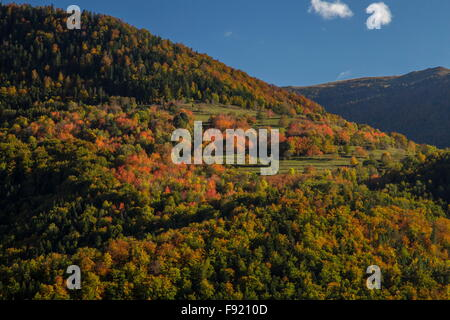 Autumn colour in the Ariege pyrenees, from above Niort de Sault, France. - Stock Photo