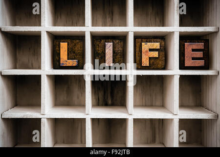 The word 'LIFE' written in vintage ink stained wooden letterpress type in a partitioned printer's drawer. - Stock Photo
