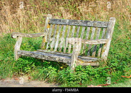 Rotting old wooden bench in a park. - Stock Photo
