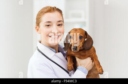 happy doctor with dog at vet clinic - Stock Photo
