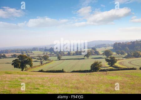 View over Ragley Estate, Warwickshire, England. - Stock Photo