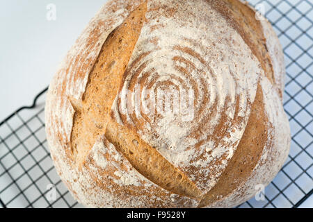 A homemade freshly baked loaf of sourdough bread on a rack - Stock Photo
