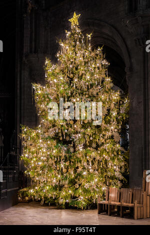 Ely Cathedral Christmas Tree Stock Photo Royalty Free Image  - Medieval Christmas Tree